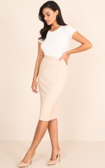 Director Skirt in Beige
