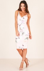 Hold On Tight dress in blush floral