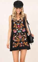 Lost And Found dress in black embroidery