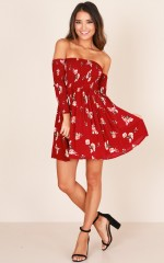 Lucky Charm Dress in  wine floral