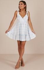 Amalfi swing dress in blue check