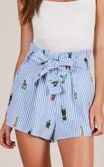 Desert Sunshine shorts in blue stripe