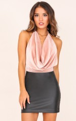 Valley Dolls top in blush velvet