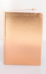 Showpo Note Book in rose gold