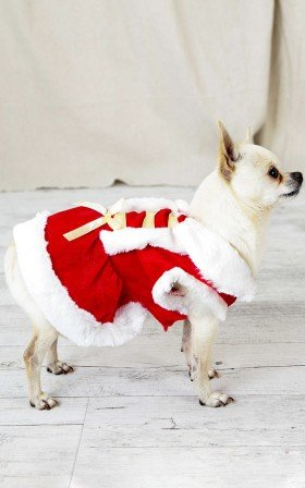 Mrs Claus costume in red and white