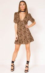 Making It Down dress in leopard print