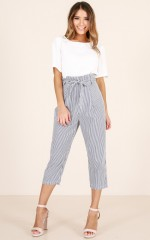 Steal Your Thunder pants in navy stripe