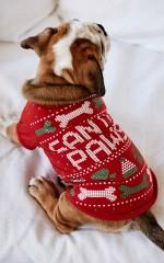Santa Paws pet tee in red