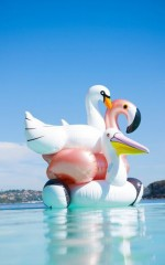 Sunny Life - Luxe Float Swan in white