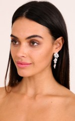 Whatever You Like earrings in silver