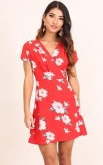 Lovely Light dress in red floral