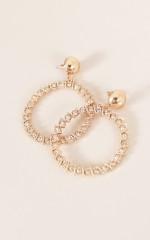 Ringleader earrings in gold