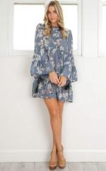 Mind Of Mine Dress in blue print