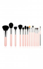 Makeup Brush set in pink and silver - 15 pc