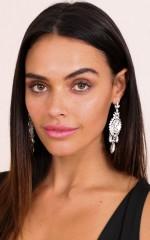 Wish You Well earrings in silver