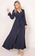 Through The Palms maxi dress in navy print