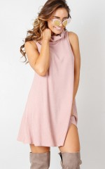 Wait And See dress in blush